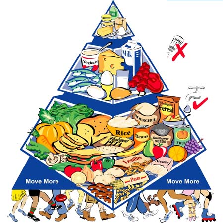 How to Make a Food Pyramid